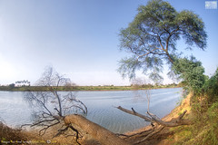 Krishna River, Kudachi, Karnataka, India (Humayunn Niaz Ahmed Peerzaada) Tags: lake karnataka krishnanadi krishnariver kudachi kudchi krishnalake
