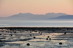 (_Marcel_) Tags: ocean light sunset mountains beach norway backlight licht norwegen fjord gegenlicht nordland mitternachtssonne fylke