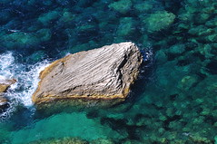 Clear Waters of Corsica 2014 (Environmental Artist) Tags: sea sky sun france tree rock pine sand europe mediterranean turquoise
