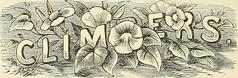 Anglų lietuvių žodynas. Žodis tricolor tube reiškia tricolor vamzdis lietuviškai.