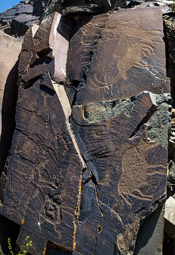 animal petroglyphs (Tamgaly - Kazakhstan) 3
