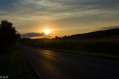 Sunset over the vineyards (Gregushko) Tags: sunset summer nikon atmosphere vineyards d3200