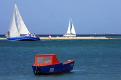 1-IMG_5107-001 (eric15) Tags: kite beach sailboat race cat surf sailing wind yacht offshore competition surfing racing aruba international catamaran sail windsurfing regatta optimist sunfish 2014