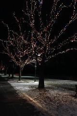 2014-01-23 21.40.05 (gordandlee) Tags: winter boardwalk thebeach 2014