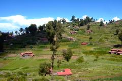 DSCF7385 (JohnSeb) Tags: lake peru titicaca lago island see meer lac perú taquile isla 湖 johnseb jezioro sø озеро southamerica2012