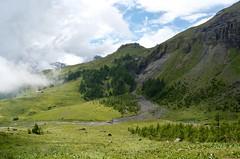 Col du Pochet 2 (jfobranco) Tags: switzerland suisse wallis cransmontana valais