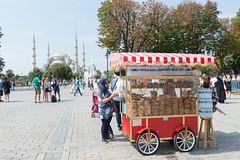 20140803-105416_DSC4601.jpg (@checovenier) Tags: istanbul turismo istambul turchia moscheablu intratours voyageprivée