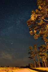 country road (rowe_rosemary) Tags: longexposure trees night mississippi stars country milkyway d3200