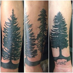 tree silhouette tattoo by wes fortier - Burning Hearts Tattoo Co. 1430 Meriden Rd.  Waterbury, CT