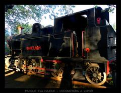 Parque eva hajduk locomotora a vapor - Diaz De Vivar Gustavo (Diaz De Vivar Gustavo) Tags: parque argentina de eva buenos aires gustavo vapor roca locomotora diaz ranelagh hajduk ferrocarril berazategui vivar
