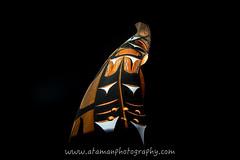 _DSC0067.jpg (Ataman Photography) Tags: canada art night nikon bc britishcolumbia indian totem tokina vancouverisland totempole firstnation f28 esquimalt 1116 greatervictoria d5200 tokina1116mmf28 greatervictoriaregion