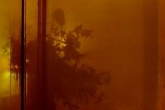 interior (*F~) Tags: light home window night gold shadows interior explore silence passion silêncio rebelion explore1