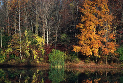 Eagle Creek Park, Indianapolis, Indiana (Roger Gerbig) Tags: 35mm indianapolis indiana slidefilm eaglecreekpark canoneos3 kodachrome200 135film canonef28105f3545 rogergerbig