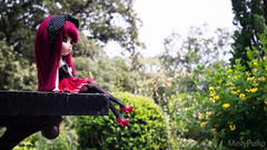 Jardin botanique~ (MintyP.) Tags: 6 garden photography doll sony wig groove botanic pullip merl nex obitsu mintypullip elwyna