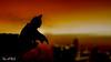 """A hero can be anyone"" (The Aphol) Tags: lego fun legography legophotography minifigures toy toyphotography batman silhouette sundown darkknight gotham city knight dc superheroes night bat brucewayne"