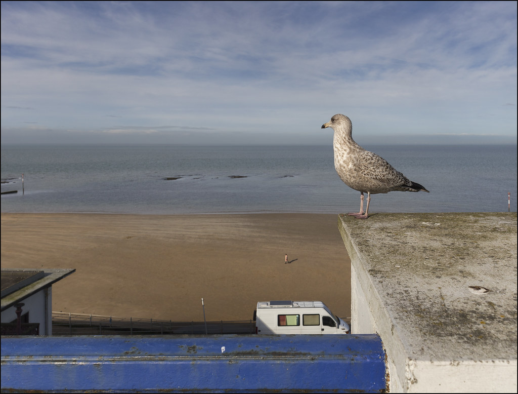 the world u0027s most recently posted photos of margate and