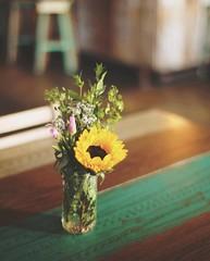 Sunny inside (ninasclicks) Tags: flower sun sunny sunflower table vase bokeh dof flowers