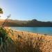 Kayaking the Abel Tasman, NZ (david t ruddock) Tags: anchorage abeltasman