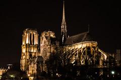 Notre Dame de Paris (Lonni.besançon) Tags: paris france notre dame de cathédrale cathedral church architecture ile la cité water bridge night sunset lights light colours colourful colors nightlight allfreepicturesjune2017challenge