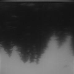 (bravery914) Tags: brownie hawkeye film medium format 120mm 620mm scan scad colorado savannah geogia vail black white bw trees nature mountains light dark
