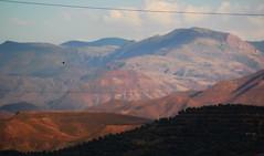 Alborz Mountains (nahid-v) Tags: old trip travel nature landscape view iran natur persia utsikt oldbuilding alleys landskap lahijan