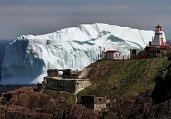 Fort Amherst Visitor (Karen_Chappell) Tags: lighthouse seascape canada ice nature newfoundland landscape scenery scenic stjohns atlantic iceberg nfld eastcoast atlanticcanada fortamherst avalonpeninsula