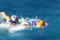 GO4G8018_R.Varadi-fotogalerie-rv.ch (Robi33) Tags: summer sports water swimming ball fight women action basel swimmingpool watersports waterpolo sportspool waterpolochampionship