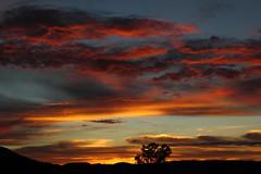 Sunrise 7 20 2014 #42 (Az Skies Photography) Tags: morning red arizona sky orange cloud sun black rio yellow skyline clouds sunrise canon skyscape eos rebel gold dawn golden cloudy salmon july az rico 20 rise daybreak 2014 arizonasky riorico rioricoaz arizonasunrise t2i arizonaskyline canoneosrebelt2i eosrebelt2i cloudsstormssunsetssunrises arizonaskyscape 7202014 july202014
