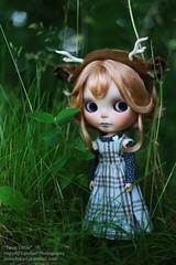 Fawn Little