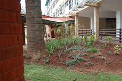 """1. Heart and Cancer Wing ,Agakhan University Hospital Nairobi • <a style=""""font-size:0.8em;"""" href=""""http://www.flickr.com/photos/126827386@N07/14876190498/"""" target=""""_blank"""">View on Flickr</a>"""