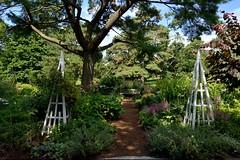 A Bench in the Shade (Eddie C3) Tags: newyorkcity gardens bronx botanicalgardens newyorkbotanicalgarden janewatsonirwinperennialgarden