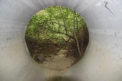 ST SORLIN EN VALLOIRE (PURN MICHEL 49) Tags: caves tunel grotte troglodites sousterrains