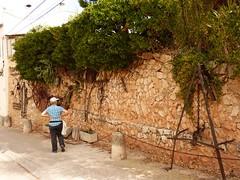 Barber de la Conca (33) (calafellvalo) Tags: paisajes pueblo medieval jordi sant montblanc grieta esquerda calafellvalo laconcadebarber barberdelaconca esboranc montblancbarberaconcagrietajordimedieval
