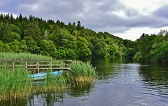 una barca tutta sola ... (miriam ulivi - OFF /ON) Tags: irlanda ashfordcastlepark lago lake alberi trees vegetazione barca boat nature acqua water verde green abigfave 7dwf miriamulivi nikond3200