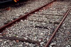 piedras en la via (Noemi Ce Re) Tags: railroad rail piedras viadeltren