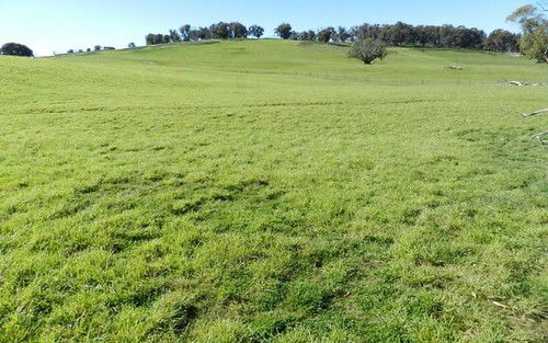 202 Off Redground Heights Road, Laggan NSW