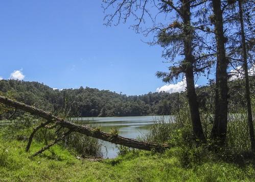 Lagunas De Montebello DSC01862focPr