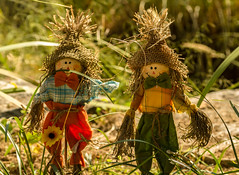 Little Scarecrows (Skagos26) Tags: cute art nature nikon asia crafts scarecrow straw seoul southkorea 105mm childrensgrandpark d7100
