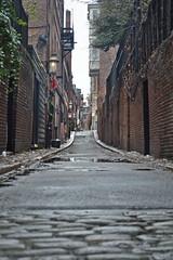 Alley in Beacon Hill (Boston) (Doncardona) Tags: alley beacon hill street cobblestone paving paved cobble boston massachusetts usa united states north america worldtraveler jpworldtraveler travel trip adventure journey nikon nikon3100 3100 ngc