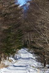 八ヶ岳(やつがたけ)-20170204_122539-LR (HYLA 2009) Tags: 八ヶ岳 alpineclimbing japan taiwan yhhsu yatsugatake mountain snow やつがたけ アイス アルプス クライミング 冬山 山 爬山 登山 許永暉攝影 雪地
