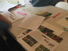 IMG_6768 (TTF Watershed) Tags: sustainablecheltenham wyncoteaudubon fhsp 2017 elkins park ecofriendly backyards workshop
