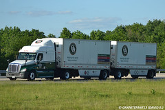 Old Dominion Freightliner Cascadia Sleeper with Doubles (Trucks, Buses, & Trains by granitefan713) Tags: tractor twins pups doubles 18wheeler tractortrailer freightliner ltl olddominion ca125 odfl trucktractor freightlinertruck freightlinercascadia lessthantruckload doubletrailers olddominionfreightlines
