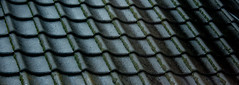 A Japanese Roofing Tile (Digpik) Tags: tile japanese  roofing