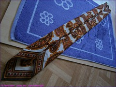 217TC_Scarves_Dreams_(38)_June07,29,,2014_2560x1920_6071158_sizedflickR (terence14141414) Tags: rock stone scarf silk dreams gag foulard soie gagging malacite esarp scarvesdreams
