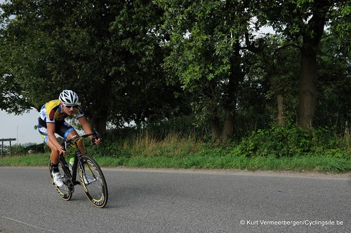 Geel Oosterlo  (219)