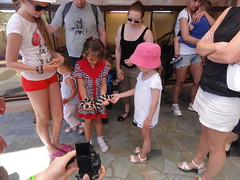 DSC07909 (When The Levée Breaks) Tags: family holiday greece crete aquaworld hersonnisos