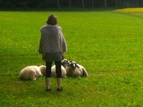 Das Lamm und der Wolf. 2014