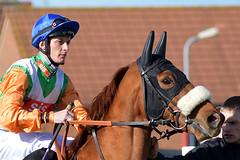 AFLDSC_4689 (mmab72) Tags: horse race silk racing course mount jockey races handicap racecourse turf equine redcar silks