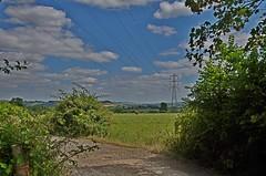 989-29L (Lozarithm) Tags: chippenham landscape paths k5 smcpda1770mmf4alifsdm pentax zoom 1770