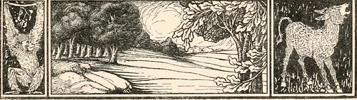 "Image from page 10 of ""The cat"" (1905)"
